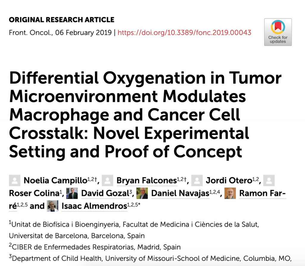 Differential Oxygenation in Tumor